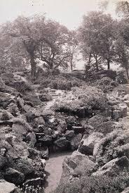 royal botanic garden edinburgh rock garden