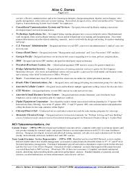 technical resume writer professional summary