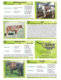 Sale Barns In Nebraska Event Gordon Livestock Market Catalog Horse Sale Dvauction