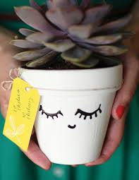 make your day diy all day long face plants and paint pots