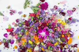 edible flowers edible flowers spruce up springtime menus in las vegas las vegas
