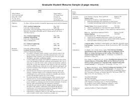 Chemical Engineering Internship Resume Samples Examples Of 2 Page Resumes Bright Design Two Page Resume Sample 8