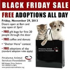 black friday pet adoption wichita kansas blackfriday 2013 adoption cat dog pet