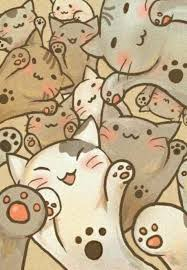 wallpaper cat whatsapp 26 best iphone wallpaper images on pinterest background images