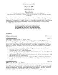 sample resume for finance internship sample resume for audit internship frizzigame senior it auditor resume free resume example and writing download
