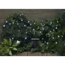 Ladybug Solar Garden Lights - garden solar light spirals art in the garden pinterest