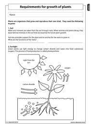 all worksheets science worksheets for year 4 printable