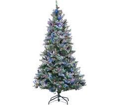 ed on air u2014 christmas trees u2014 christmas u2014 holiday u2014 for the home