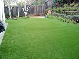 Backyard Remodel Cost by Synthetic Grass Cost Lexington Texas Lawn And Garden Backyard