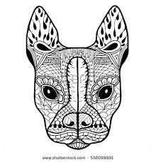 boston terrier french bulldog blank stock vector 550099891