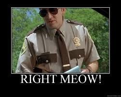 Office Space Meme Blank - 29 best super troopers images on pinterest super troopers film