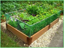 100 raised bed garden design ideas best 10 vegetable garden