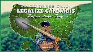 Labor Day Meme - happy labor day pot farmer weed memes weedmemes marijuanamemes