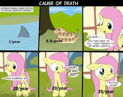 My Little Pony Know Your Meme - cause of death my little pony friendship is magic know your meme