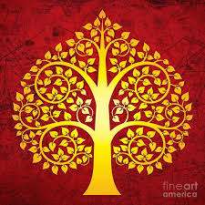36 best bodhi tree sacred images on bodhi tree