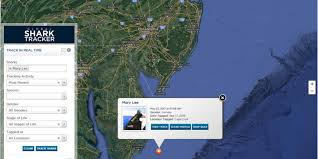 mary lee the shark last seen off lbi