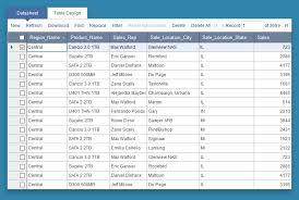 How To Remove Pivot Table Pivot Table Reports Caspio Online Help