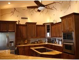Houston Kitchen Cabinets by Kitchen Discount Kitchen Cabinets Posiword Kitchen Cabinets