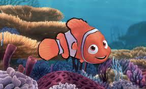 finding nemo u0027 true story talking fish
