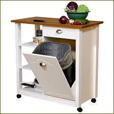 Tilt Out Trash Bin Cabinet With Drawer Best Cabinet Decoration - Kitchen cabinet garbage drawer