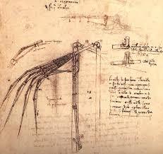 sketch of wing armature for flying machine leonardo da vinci