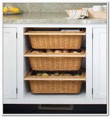 under counter storage cabinets amazing storage cabinets glamorous under counter storage bins under