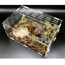 cube acrylic reptile terrarium for spiders gecko lizard small
