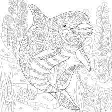 underwater dolphin coloring page coloring pinterest