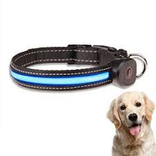 Light Up Dog Collar Kamileo Led Dog Collar Usb Rechargeable Light Up Dog Collar With