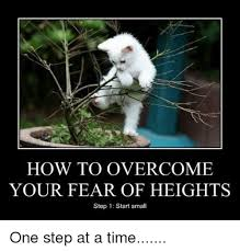 Fear Meme - 25 best memes about fear of heights fear of heights memes