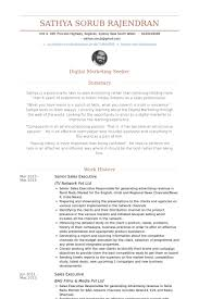 Senior Sales Executive Resume Samples Senior Sales Executive Resume Samples Visualcv Resume Samples
