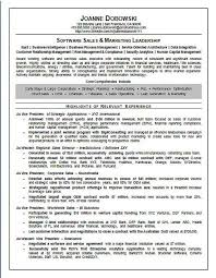 Online Resume Software by Software Sales Executive Resume Example Executive Resume Resume