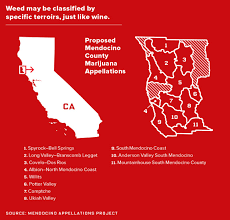 Ca Vehicle Bill Of Sale by California U0027s Looking For New Tax Revenue Weed U0027em And Reap Wired
