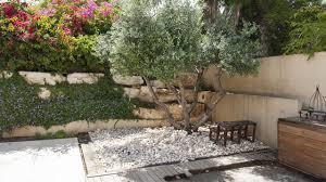 mediterranen garten anlegen diese pflanzen machen urlaubslaune