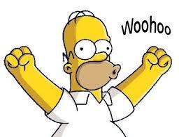 Woohoo Meme - homer woohoo reaction images pinterest
