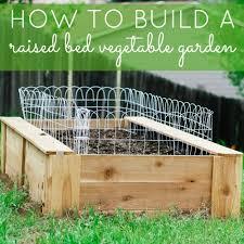 diy raised vegetable garden beds gardening ideas