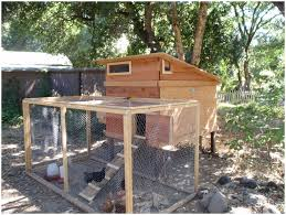 backyards stupendous backyard chicken coop simple backyard