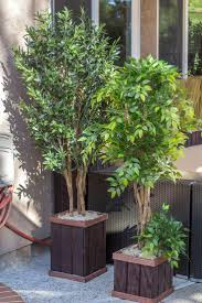 Faux Outdoor Bushes 19 Best Artificial Plants And Trees Images On Pinterest Ficus