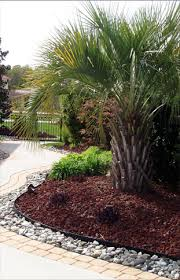 landscaping front landscaping ideas lava rock