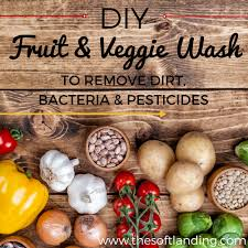 Homemade Pesticide For Vegetable Garden by Diy Fruit And Veggie Wash To Remove Dirt Bacteria And Pesticides