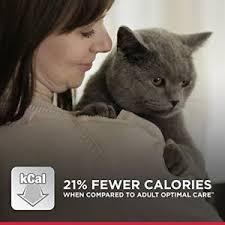 science diet light calories hill s science diet light chicken recipe dry cat food 7 lb