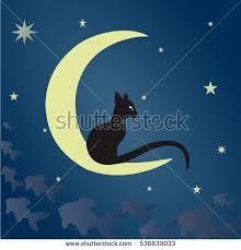 black cat on moon stock vector 536839033