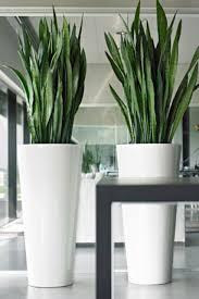 large rattan vase best vase 2017