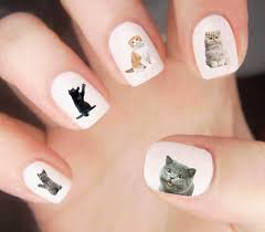 cats nail decal grumpy cat cat silhouette nail wraps nail