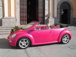 best 25 beetle convertible ideas on pinterest vw beetle