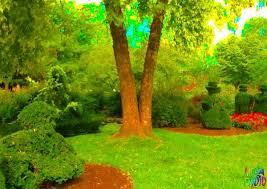 Columbus Topiary Garden - darren ramsey on twitter