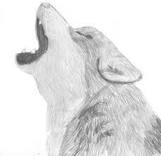art by wren wolf sketch