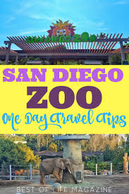 san diego zoo tips for your trip best of magazine