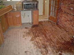 floor medic wood floor repair and restoration gallery in