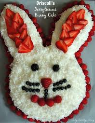 Easter Cake Decorating Ideas Pinterest by Best 25 Bunny Cakes Ideas On Pinterest Easter Bunny Cake